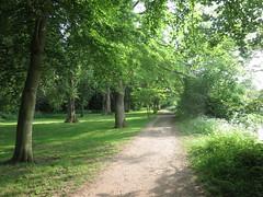 Thames Path, Abingdon (John Steedman) Tags: uk greatbritain england unitedkingdom berkshire oxfordshire thamespath berks oxon grossbritannien     grandebretagne