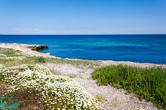 Pianosa 16331 (Roberto Miliani / Ginepro) Tags: trekking walking island hiking ile tuscany toscana elbe isola toskana camminare parconazionale arcipelagotoscano pianosa