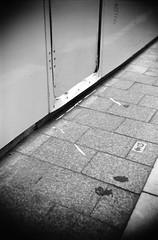 (cut here.) (Dinasty_Oomae) Tags: street blackandwhite bw monochrome tokyo blackwhite shinjuku outdoor kabukicho  zeissikon  boxcamera      boxtengor  shinjukuku