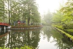 HASUIKE (Lotus Pond) (sim_limited) Tags: reflection green japan sunrise pond lotus outdoor earlymorning koyasan worldheritage wakayama hasuike pentaxlife pentaxart pentaxflickraward pentaxawards danjyogaran