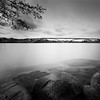 Spring Waters In Limbo.. (Peter Levi) Tags: city longexposure bridge blackandwhite bw blancoynegro cityscape sweden stockholm branches le blackwhitephotos nd110 bestcapturesaoi elitegalleryaoi dblringexcellence tplringexcellence asquaresuperstarstemple eltringexcellence