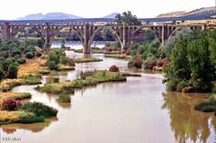 Guadalquivir (Eddy Allart) Tags: rio analog river spain andalucia espana linares jan spanje rive rivier eddyallart