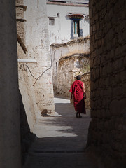 Path to Enlightenment (jim29028) Tags: china red path walk monk buddhism olympus tibet monastery enlightenment lhasa zuiko hg swd 43 e5 drepungmonastery zd fourthirds nepaltibet 1260mm
