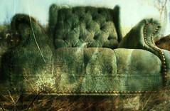 Comfy Chair (mackenzieall) Tags: green texture photoshop wow chair nikon scratch ineffable nikond3100