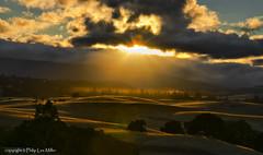 No Guru (philipleemiller) Tags: california sunset nature clouds landscape rollinghills windingroads arastraderopreserve goldenhills d7000 californiaoaktrees topazadjust magicunicornmasterpiece galleryoffantasticshots trueexcellence1