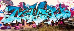 07072012 19 (Anarchivist Digital Photography) Tags: graffiti pov murals denver rtd awer