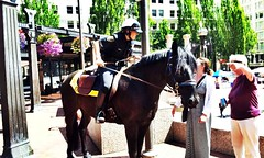 Mounted Police (For Bunk) Tags: summer horse ice oregon square portland downtown cops farmers cream police tasty tournament cop mounted dairy pioneercourthousesquare oregondairyfarmers