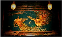 Two Peacocks fighting over shiliings $$$ ~ Allegory ~ Artist and the Potential Owner Are Fighting Over The Cost ~ Washington DC (Onasill ~ Bill Badzo - 60 Million Views - Thank Yo) Tags: house art museum architecture mi painting whistler smithsonian dc washington artist gallery michigan room detroit peacock historic painter mansion 1001nights freer oneil nrhp 1001nightsmagiccity onasill