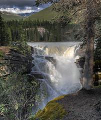 Athabasca Falls 1 (John Payzant) Tags: waterfall albertacanada jasperpark