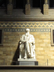 Darwin (maineexile) Tags: london naturalhistorymuseumlondon