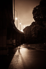 bridge shore [explored]