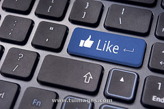 like message on keyboard button, social media concepts (Tu_images) Tags: life up computer keys marketing keyboard media key market buttons background pad like social follow websites website online button backgrounds networking thumb network concept enter conceptual thumbs encourage praise pads seo agree facebook concepts supportinternet