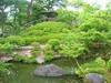 Yoshikien Garden, Nara (Emanuele_Crocco) Tags: travel travelling japan nara viaggi giappone zengarden giardinozen viaggiare yoshikiengarden eyesoftravellers
