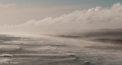 Salt spray (Mike Brebner) Tags: winter sea seascape west beach water coast nikon waves view wind north auckland nz muriwai 70200vr d300s