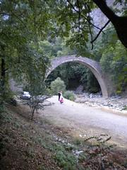 DSCN7602 (kitsosmitsos) Tags: bridge pyli trikala