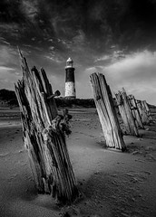 Spurn Point (wilsonaxpe) Tags: autumn lighthouse mono groynes spurn autumnlight spurnpoint spurnhead disusedlighthouse wilsonaxpe