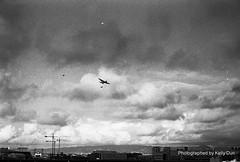 Over the Skies of San Francisco (pleasesavemycat) Tags: sanfrancisco leica blackandwhite film 50mm kodak trix ttl bomber m6 msoptical sonnetar