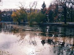 2015-11-10 07.15.46 1 (anastasiya_klenyaeva) Tags: trees sky nature russia autmn     saratov vsco vscocam vscorussia vscosaratov