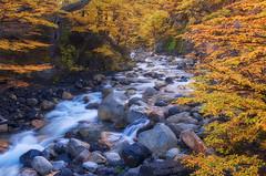 Fall Colors (terenceleezy) Tags: chile autumn patagonia southamerica argentina fallcolors fitzroy torresdelpaine parquenacionaltorresdelpaine cuernosdelpaine miradortorres