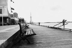 Harbourfront (A Great Capture) Tags: toronto ontario canada water bench spring dock photographer canadian boardwalk springtime on agc 2016 ald jamesmitchell ash2276 adjm ashleylduffus wwwagreatcapturecom agreatcapture mobilejay