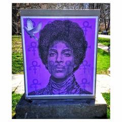 Prince (jcc55883) Tags: music rock memorial icons purple prince pop ipad ipadair