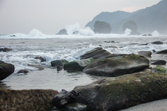 Water is Everywhere! (1) (endawati) Tags: beach eastjava jember papumabeach