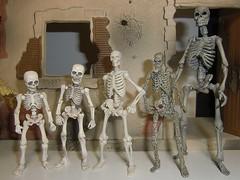 Skeleton Sizes (DrSyn) Tags: skeletons deadites revoltech bossfightstudio poseskeleton