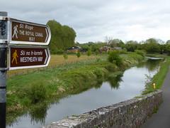 The Royal Canal Way (seikinsou) Tags: bridge ireland summer way canal signpost humpback towpath royalcanal westmeath