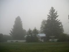 Foggy Morning. (geevee41) Tags: morning home fog spring prairie