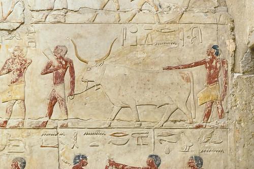 Saqqara Mastabas: Idut