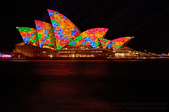 Opera House Floral Vivid Sydney 2016 by Kaye Menner (Kaye Menner) Tags: longexposure pink flowers blue light lightpainting black building green water floral yellow architecture night reflections landscape photography lights harbor colorful sydney operahouse sydneyharbour sydneyoperahouse projections lightprojections vividsydney kayemennerphotography kayemenner kayemennernight kayemennervividsydney lightonoperahouse vividsydney2016 operahousefloralvividsydney2016 flowersonoperahouse floraloperahouse