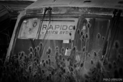 Old bus (Pablo Arrigoni) Tags: shadow bw white black bus abandoned blanco argentina argentine america canon eos rust shadows south country negro sombra oxido bn micro campo viejo rapido sombras colectivo cardon transporte ayre oxi faster buen abandonado 18135 70d eos70d