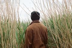boy in reeds (Christoph Hofbauer) Tags: canon av1 kodak portra 160 brown reed reeds outdoor field jacket autumn cloudy mist boy man