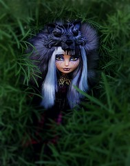On the Prowl (ozthegreatandpowerful) Tags: red grass big high wolf doll dolls outdoor bad collection riding hood after ever exclusive cerise sdcc 2014 eah