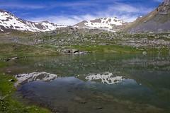 Reflets (Philis.Nat) Tags: france montagne alpes canon altitude lac neige fonte reflets printemps col cime bonette eos7d