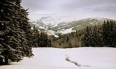 Combloux, lomography, 17 (Patrick.Raymond (2M views)) Tags: alpes haute savoie combloux montagne neige argentique lomography xpro nikon