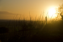 Surrey Landscape - Get Pushed R21 (Paul J Chapman Photography) Tags: landscape surrey getpushedr21