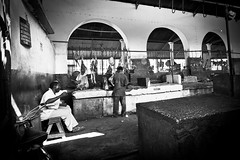 Butcher's Shop (Davide Arizzi) Tags: shop tanzania flickr butcher stonetown share 2012 zanzibartown zanzibarurbanwest