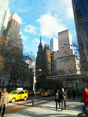 New York(304)