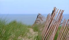 Dune Fence (DavidGuthrie) Tags: lake grass fence sand nikon michigan dune hff