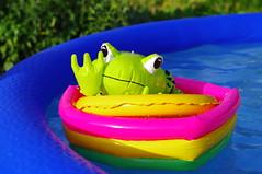 Froggie (Aneri24) Tags: water pool swimming toy frog sunbathing