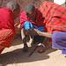 Maasai_2012 05 31_2795