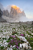 Attimi di luce | Pale di S.Martino | Dolomiti (Enrico Grotto) Tags: san italia tramonto pale di grotto montagna martino dolomiti enrico cima canali pradidali