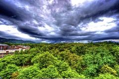 rainy in Seoul (cloud.shepherd) Tags: cloud rain nikon day korea foliage seoul nikkor hdr highdynamicrange d800 1424