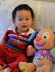 "10-month-old • <a style=""font-size:0.8em;"" href=""http://www.flickr.com/photos/22330476@N02/7624702462/"" target=""_blank"">View on Flickr</a>"