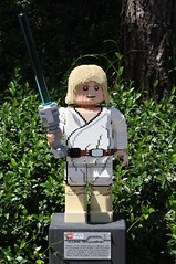 Luke Skywalker (Han Shot First) Tags: starwars lego lukeskywalker legolandcalifornia