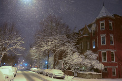Streetlight snow (Tim Brown's Pictures) Tags: trees winter brown snow by night dawn march washingtondc photo tim spring streetlights snowstorm victorian snowing victorianhomes stpatricksday snowcovered 2014 greaterustreethistoricdistrict logancirclehistoricdistrict march172014