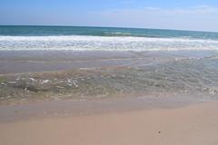 El Saler_160 (P. de Beira) Tags: naturaleza mar
