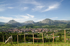 _DSC2537 (adrizufe) Tags: green nature landscape ilovenature nikon ngc paisaje basquecountry springtime garai durangaldea nikonstunninggallery aplusphoto d7000 adrizufe adrianzubia