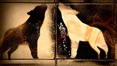 Wolves tiles (Franco DAlbao) Tags: mural tiles publicart lobos wolves vigo azulejos nikond60 artepblico dalbao francodalbao